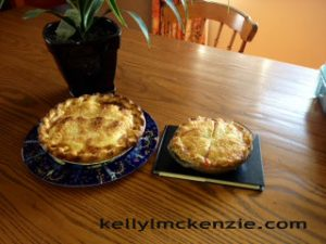 two baked pies http://kellylmckenzie.com/pie-in-the-sky/