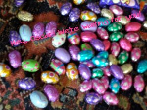 Chocolate foiled Easter eggs http://kellylmckenzie.com/hopping-alright-gobbling-down-the-bunny-trail/