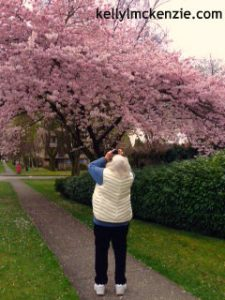 Mom photographing the cherry tree blossoms on her street. http://kellylmckenzie.com/still-blossoming-at-91/