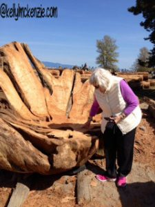 Mom getting ready to sit on carved log http://kellylmckenzie.com/the-importance-of-a-curious-mind/